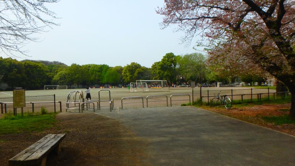 和田堀公園グランド