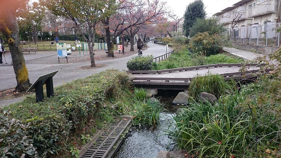 北澤緑道2